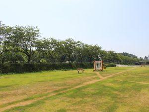 ステージクス高島 芝生広場