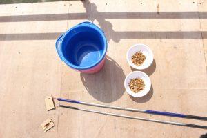 ホンモロコ釣り体験 釣り竿と餌