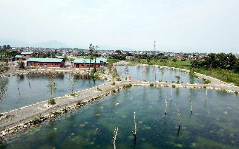 (c)高島の泉